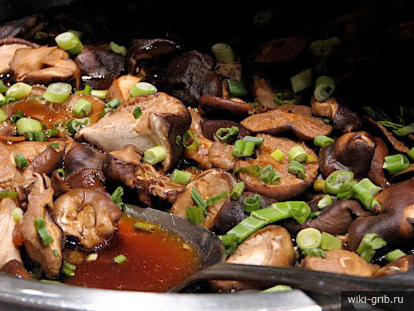 stewed-mushrooms-1